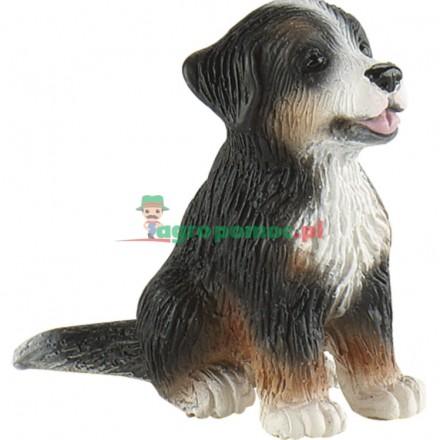 Bullyland Berneński pies pasterski - szczeniak Joy