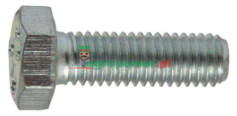 Śruby z łbem sześciokątnym | 00823463 | zdjęcie nr 1