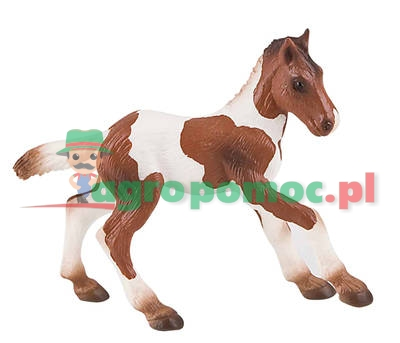Bullyland Źrebak rasy Quarter Horse | zdjęcie nr 1
