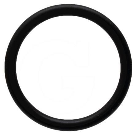 B&P O-Ring