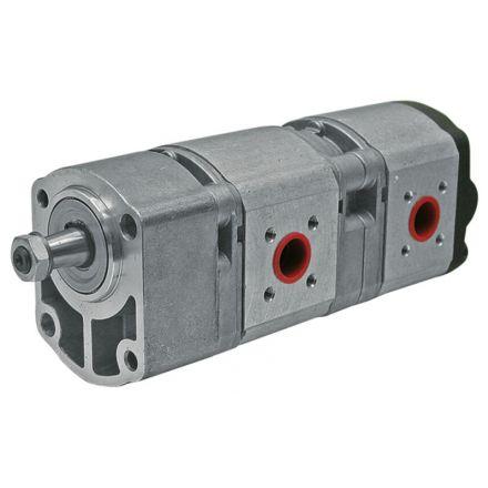 Bosch/Rexroth Pompa zębata, podwójna | 3226942R93