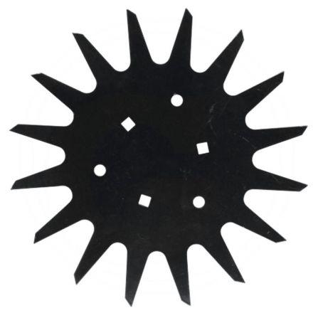 Sternscheibe